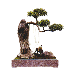 vnvn-web-design-product-8