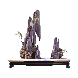 vnvn-web-design-product-7